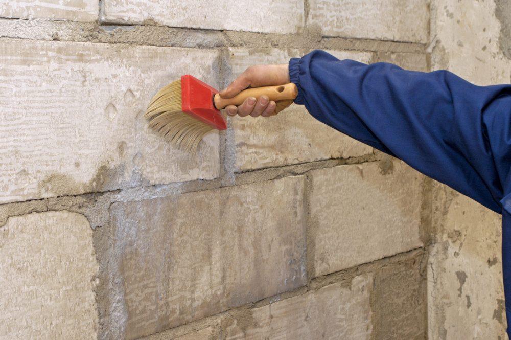Грунтовка стен против грибка и плесени