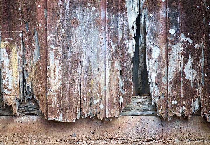 Старый деревянный забор