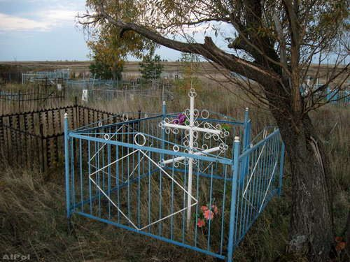 У синей давние традиции в этом выборе, какой краской покрасить ограду на кладбище